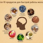 Что полезно для мозга и сосудов головного мозга